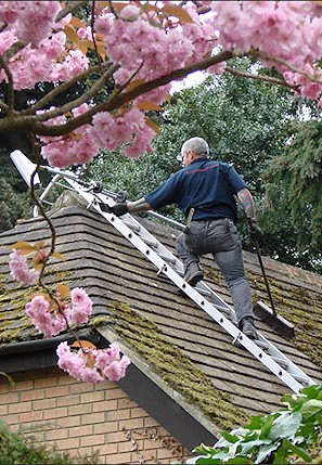 Our staff cleaning the moss from a roof in Gidea Park near Romford